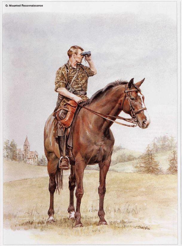 нас цветные картинки кавалеристов предоставляем