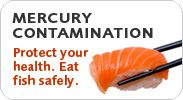 Mercury Contamination... a wallet card to help easily identify safe options in the grocery or restaurant.