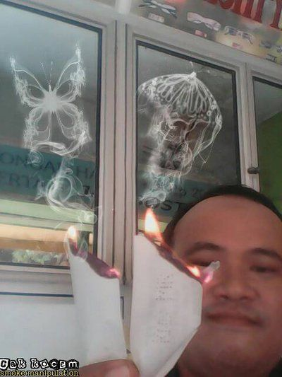 butterfly smoke manipulation 3 by Cakkocem