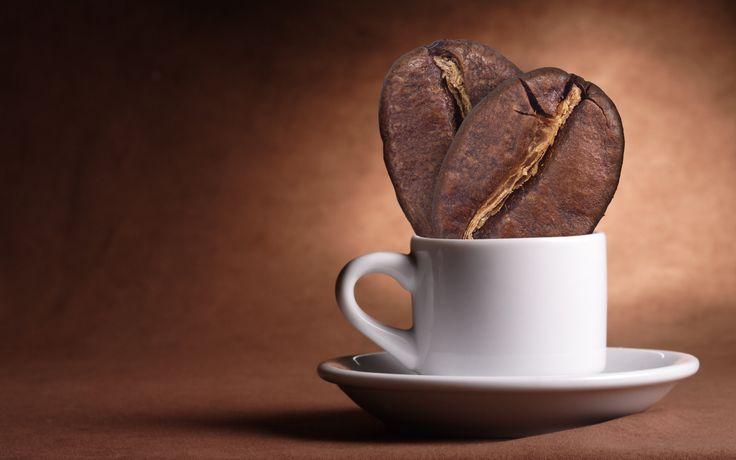 Умение приготовить правильный кофе — целое искусство, требующее больших знаний и практики. В Санкт-Петербурге есть места, где этим искусством владеют в совершенстве.