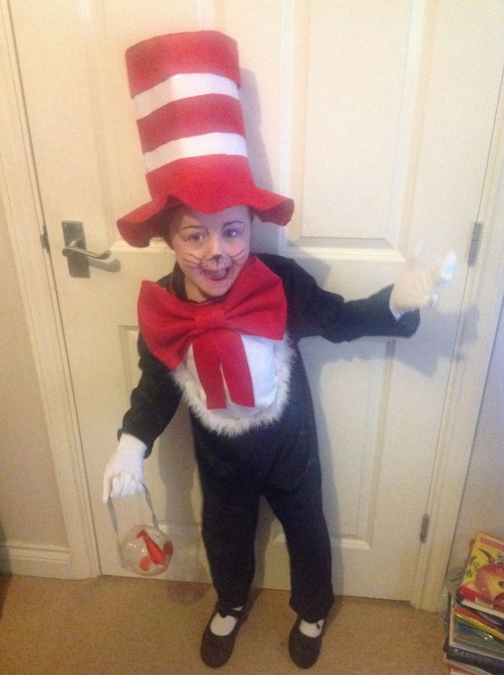 Cat In The Hat Dress Up Day Bitcoin Bubble Burst