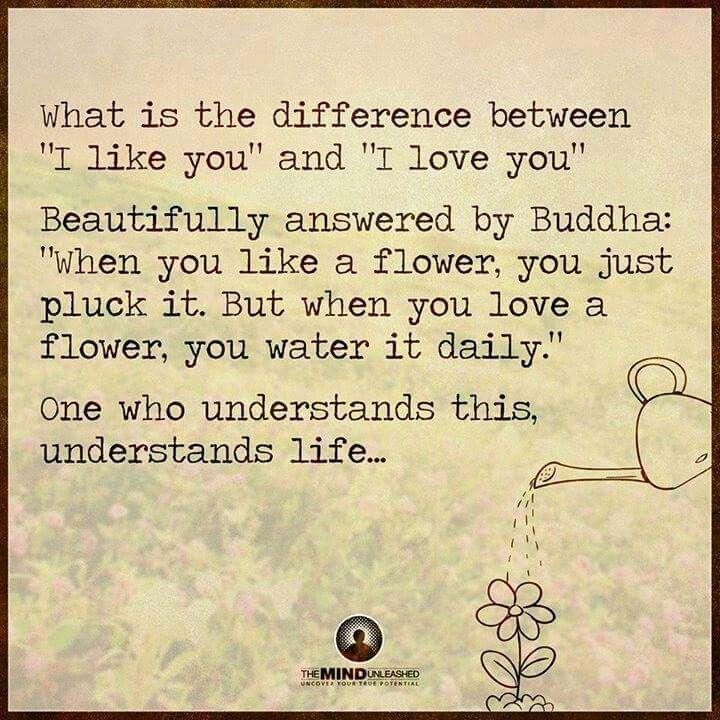 """""""Quando un fiore ti piace lo cogli, quando un fiore lo ami lo innaffi ogni giorno"""""""