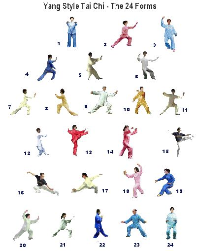 24 form tai chi poster