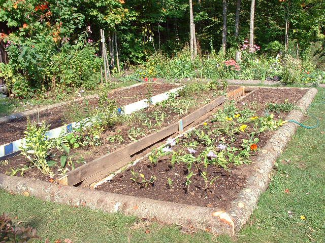 How to Garden Vegetables | Saturday, October 15th, 2011 | Author: admin