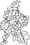 Мобильный LiveInternet Цветочки и ягодки для творчества (вышивка, роспись и тп).   DragooonFly - Со всего света, только самое лучшее!  