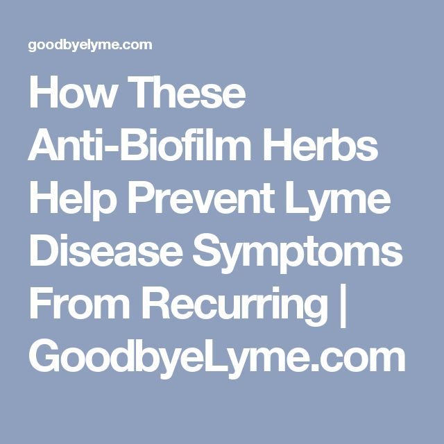 How These Anti-Biofilm Herbs Help Prevent Lyme Disease Symptoms From Recurring   GoodbyeLyme.com