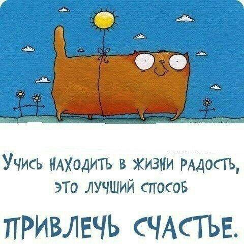 Радуйся жизни