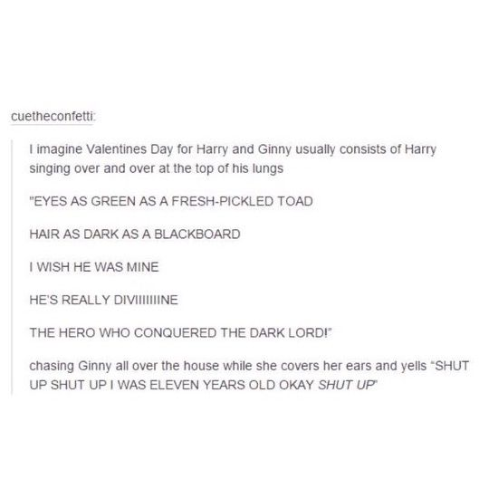 (There's also a headcanon where Voldemort wrote the love poem in the diary - no one calls him the dark lord, etc)
