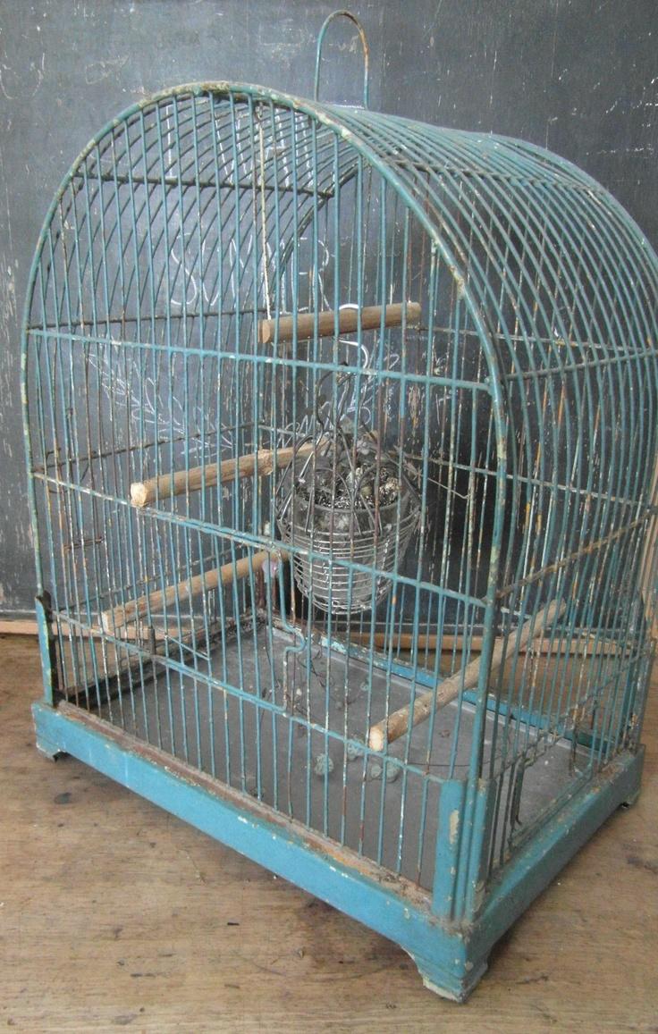 Les 88 meilleures images du tableau old bird cage cages for Oiseau domestique interieur
