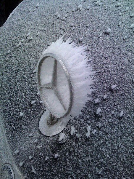 iced  #MastodonMotorCompany  Benz Mercedes