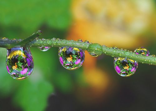 Multiple hues within the raindrop