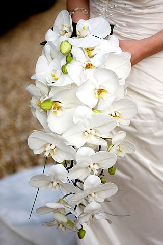 25 Best Our Unusual Designs By Wedding Flowers In Cornwall Images