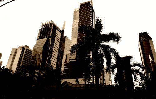 Panama - New skyline in Panama (photo by Carla Iaconetti)