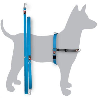 Black Dog Balance Harness Training Pack