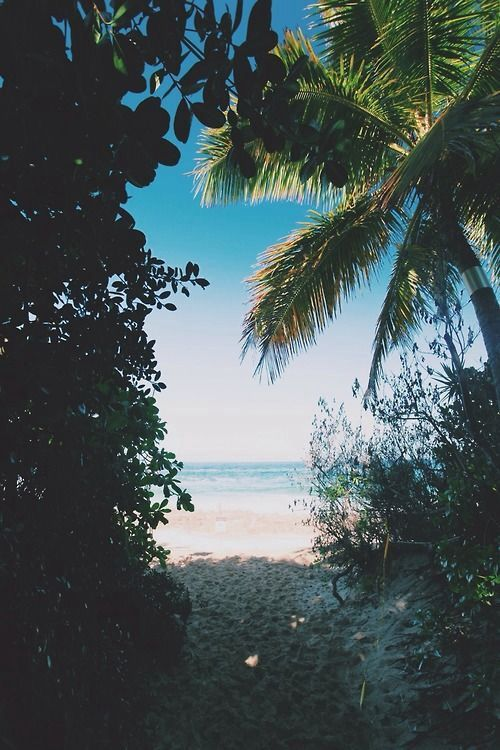 Summer <3 take me here