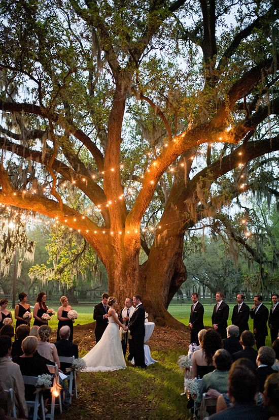 ceremony lighting for a just before dark wedding #weddinglighting http://www.weddingchicks.com/2014/04/14/get-polished-events-southern-plantation-wedding/