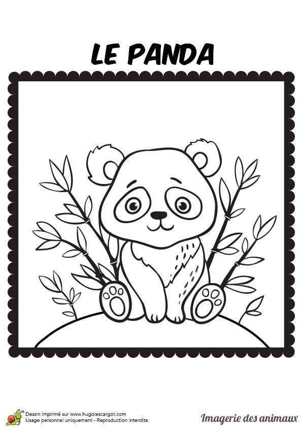 Les 25 meilleures id es de la cat gorie coloriage panda sur pinterest un panda comment - Panda coloriage ...