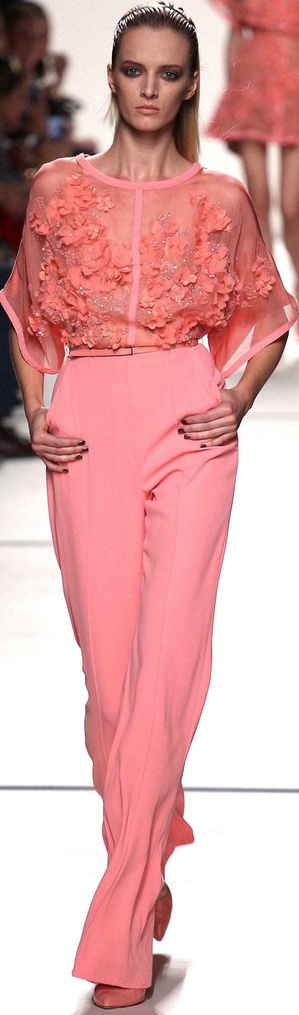 Elie Saab Spring 2014 Ready-to-Wear Fashion Show