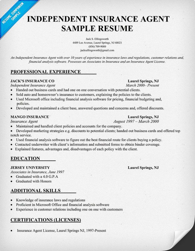 independent insurance agent resume sample