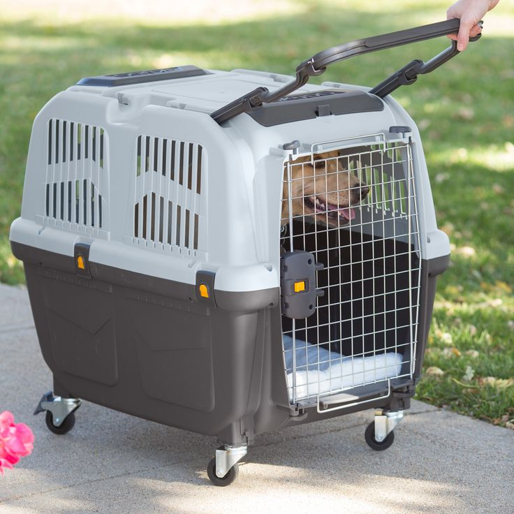 Midwest Skudo Plastic Pet Carrier - Approved for most major airlines, the Midwest Skudo Plastic Pet Carrier is the ideal solution for your traveling pup. Made of durable plastic,...