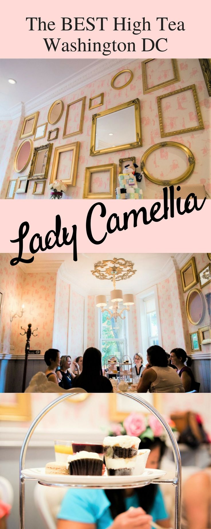 Best place for high tea in Washington DC, Lady Camellia