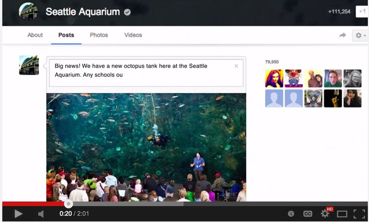 Connected Classrooms Provides Wonderful Virtual Field Trips for Your Students