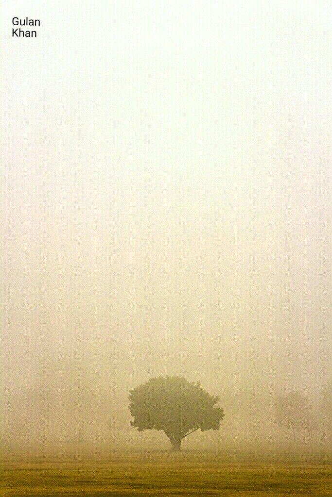 Wonderful weather in Lahore Punjab Pakistan