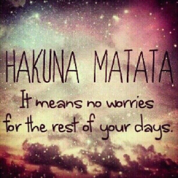 Timon and pumbaa quotes hakuna matata images galleries with a bite - Signification hakuna matata ...