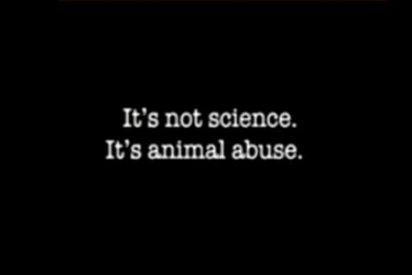 Animal Rights Group Targets Princeton University in New TV Commercial