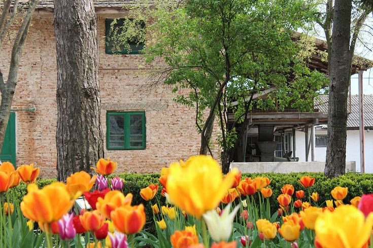Depending on the season, you can discover scented flower gardens filled with roses, lilac, ginkgo tree, silk tree, tulips, iris or you can visit the domain's vegetable and spices own garden.
