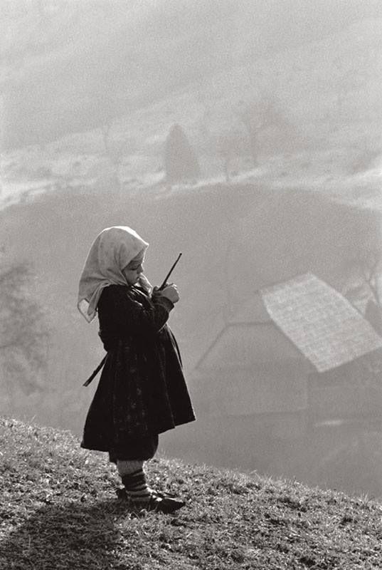 """My Maramureș"" – Miya Kosei"