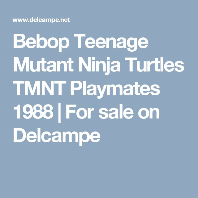Bebop Teenage Mutant Ninja Turtles TMNT Playmates 1988 | For sale on Delcampe