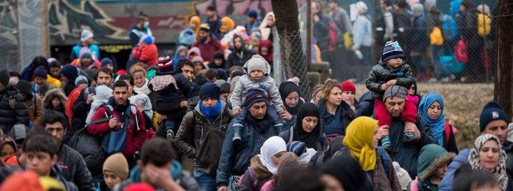 Flüchtlinge: Österreich nimmt nur noch 80 Asylbewerber pro Tag auf