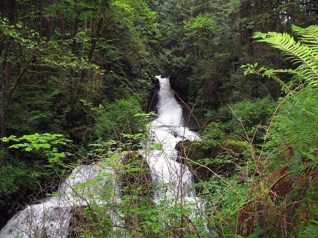 Steelhead Falls near Hayward Lake in Mission, BC.