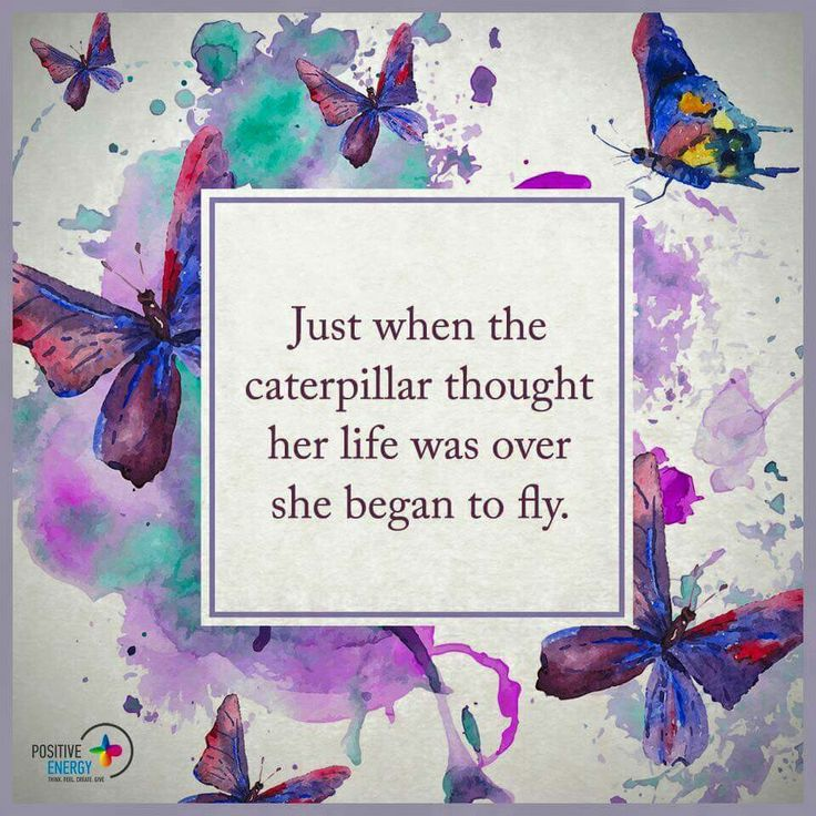 Inspirational Quotes On Pinterest: 1000+ Butterfly Quotes On Pinterest