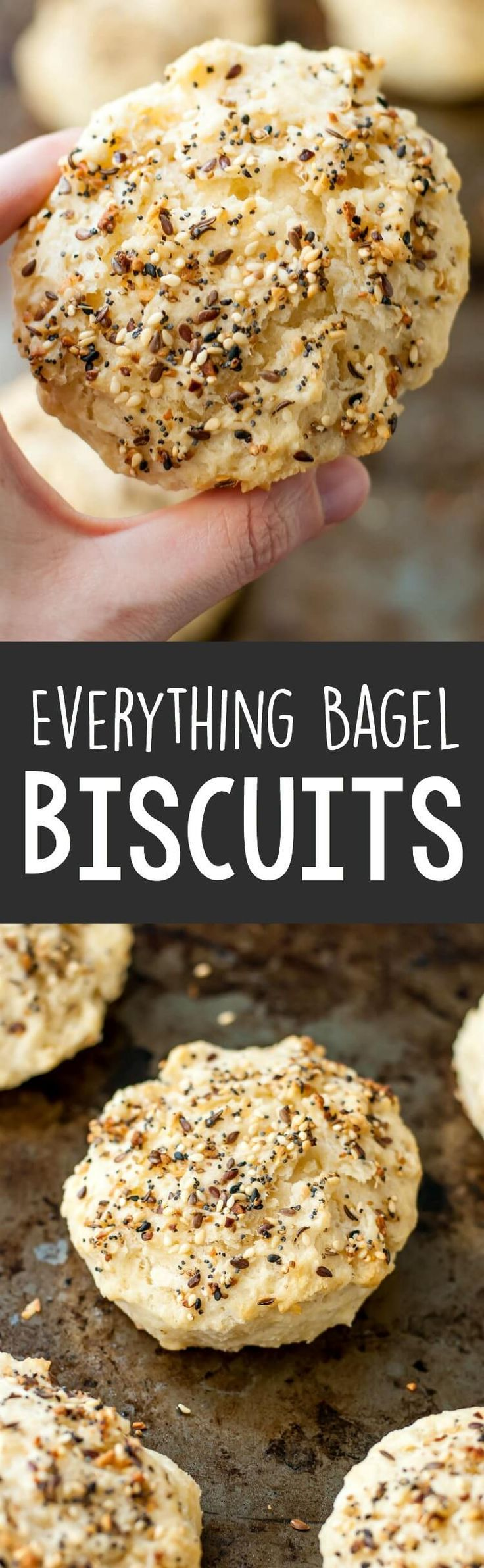 These easy everything bagel biscuits have a crunchy, flavorful, everything bagel outside with a light, fluffy, and flaky inside!