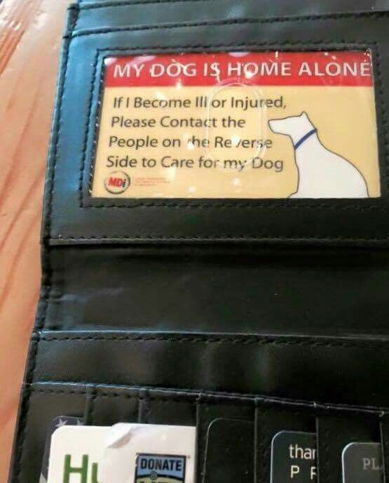 This is a great idea in case of an emergency.