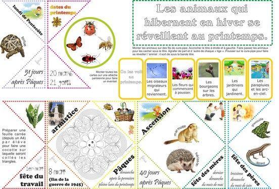 Les 4 saisons en lapbook - Fiches de préparations (cycle1-cycle 2-CLIS)