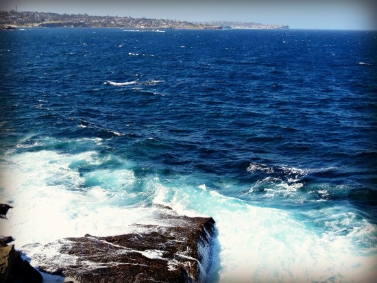 View from Maroubra