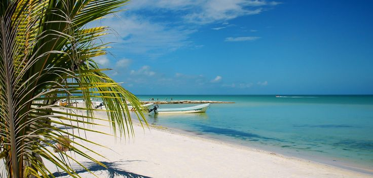 Hotel La Palapa is located on Holbox Island with 25 comfortable rooms at literally feet away from the white sandy beach and tourquoise water.