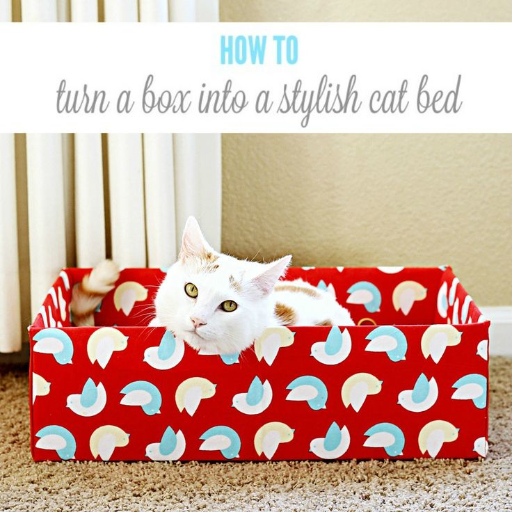 What cat doesn't love cardboard boxes? I know mine do, but they aren't very attractive. Turn a cardboard box into a DIY cat bed, no sewing machine required.