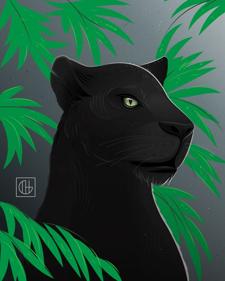 Bagheera, from Disney's 'The Jungle Book'. Voiceover by Ben Kingsley.  #illgatto #illustration #adobeillustrator #illustrator #vector #vectorillustration #junglebook #thejunglebook #baghira #bagheera #mowgli #disney #baloo #animalillustration #catillustration #cat #crazycatpeople #bigcat #coloring #panther #blackpanther #zoo #jaguar #artwork #digitalart #digitalillustration #benkingsley #jungle #junglecat
