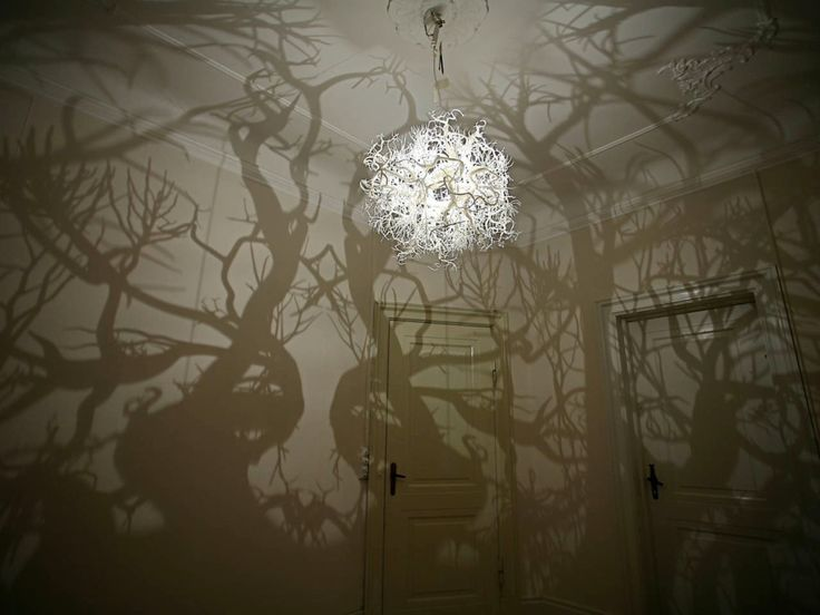 Forms in Nature Light Sculpture Forest Shadow Chandelier Resembles Darwinist Ernst Haeckel's drawings