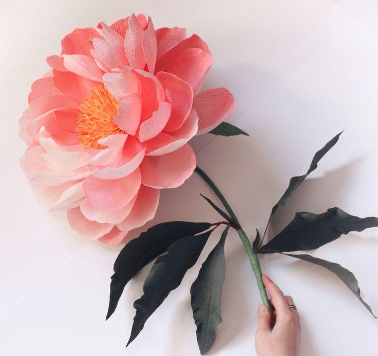 Oversized paper peony by A Petal Unfolds