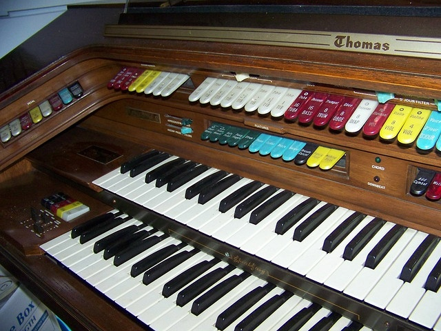 THOMAS ORGAN / CELEBRITY ROYALE 871 (POUGHKEEPSIE) …