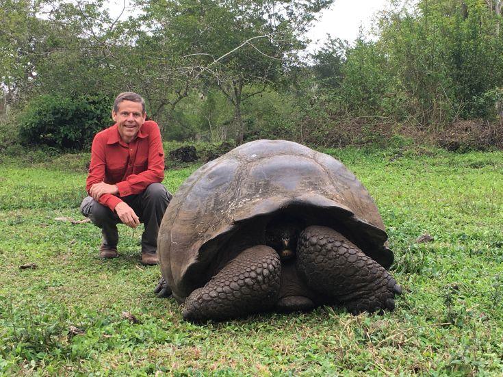 Giant Tortoise, Santa Cruz Island