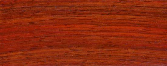 Wood Species for Hardwood Floor Medallions, Wood Floor Medallions, Inlays, Wood Borders and Block parquet - PADAUK