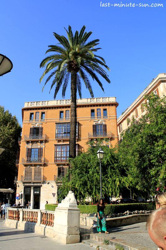Plaza de la Reina - Palma de Mallorca - http://www.last-minute-sun.com/last-minute-mallorca/ #mallorca