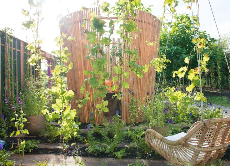 Geef je tuin of balkon een vleugje power, balans of intimiteit