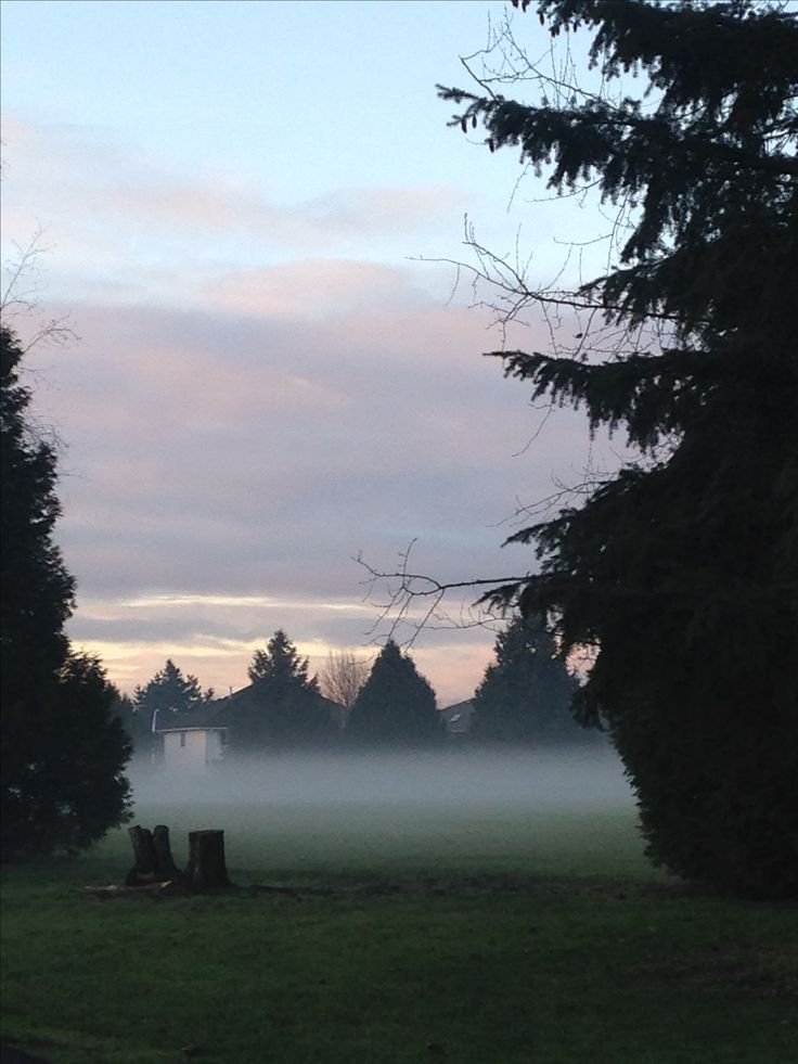 Misty morning in Cloverdale British Columbia